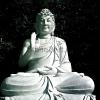 Buddha_094
