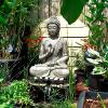 Buddha_151