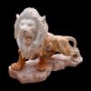 lion_007