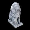 lion_047