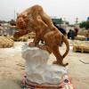 lion_120