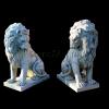 lion_213
