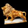 lion_078