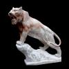 lion_030