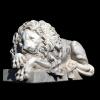 lion_248