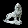 lion_055