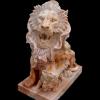 lion_006