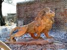 lion_114