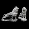 lion_042