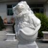 lion_209