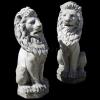 lion_085