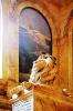lion_162