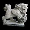 lion_018