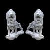lion_052