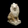 lion_048