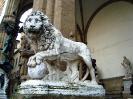 lion_136