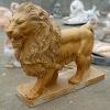 lion_240
