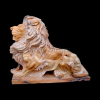 lion_003
