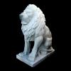lion_064