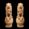lion_026