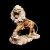 lion_089