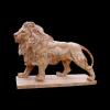 lion_065