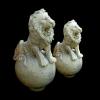 lion_025