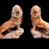 lion_073