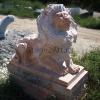 lion_217