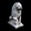 lion_032