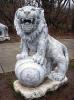 lion_125
