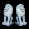 lion_061