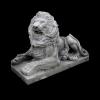 lion_031