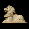 lion_021