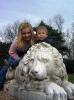 lion_158