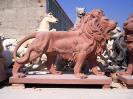 lion_115