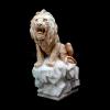 lion_066