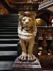 lion_192