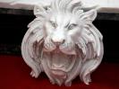 lion_201