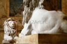 lion_160