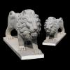 lion_028