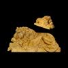 lion_043