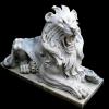 lion_076