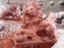 lion_111
