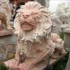lion_221