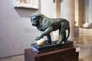 lion_131
