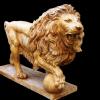 lion_082