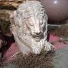 lion_220