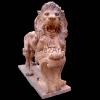 lion_245