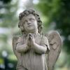 little_angel_021